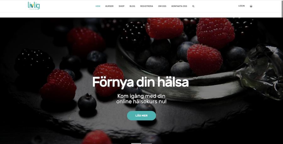 Webbsida, webbdesign -3